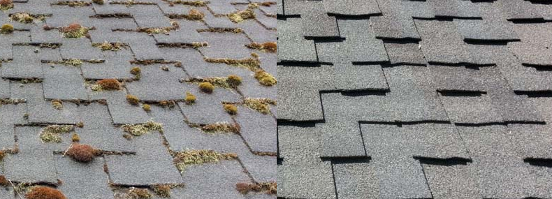 composite shingles roof cleaning